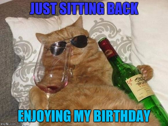 Funny Cat Birthday | JUST SITTING BACK ENJOYING MY BIRTHDAY | image tagged in funny cat birthday,robromans birthday,birthday | made w/ Imgflip meme maker