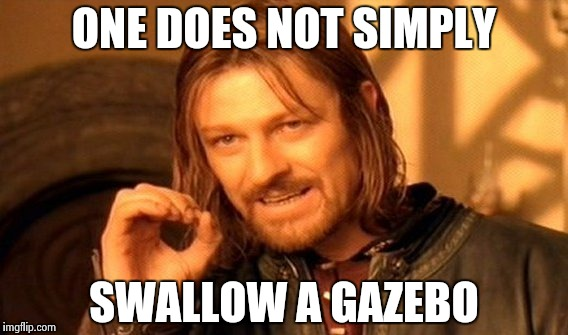 One Does Not Simply Meme | ONE DOES NOT SIMPLY SWALLOW A GAZEBO | image tagged in memes,one does not simply | made w/ Imgflip meme maker