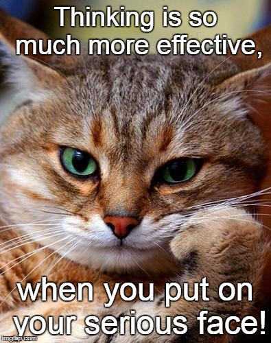 cat_pondering | Thinking is so much more effective, when you put on your serious face! | image tagged in cat_pondering | made w/ Imgflip meme maker