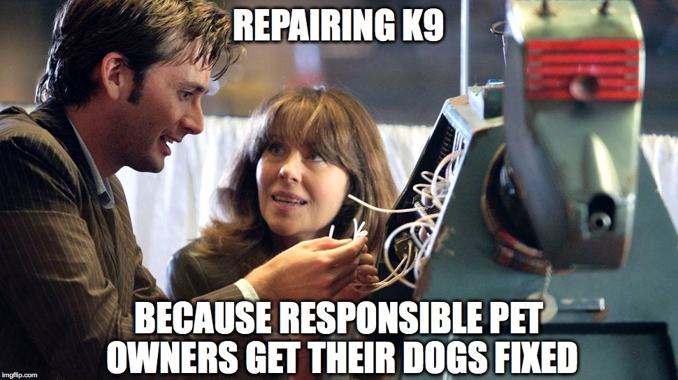 REPAIRING K9 BECAUSE RESPONSIBLE PET OWNERS GET THEIR DOGS FIXED | image tagged in drwhok9 | made w/ Imgflip meme maker