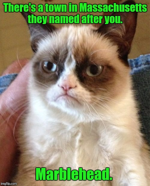 Grumpy Cat Meme | There's a town in Massachusetts they named after you. Marblehead. | image tagged in memes,grumpy cat | made w/ Imgflip meme maker