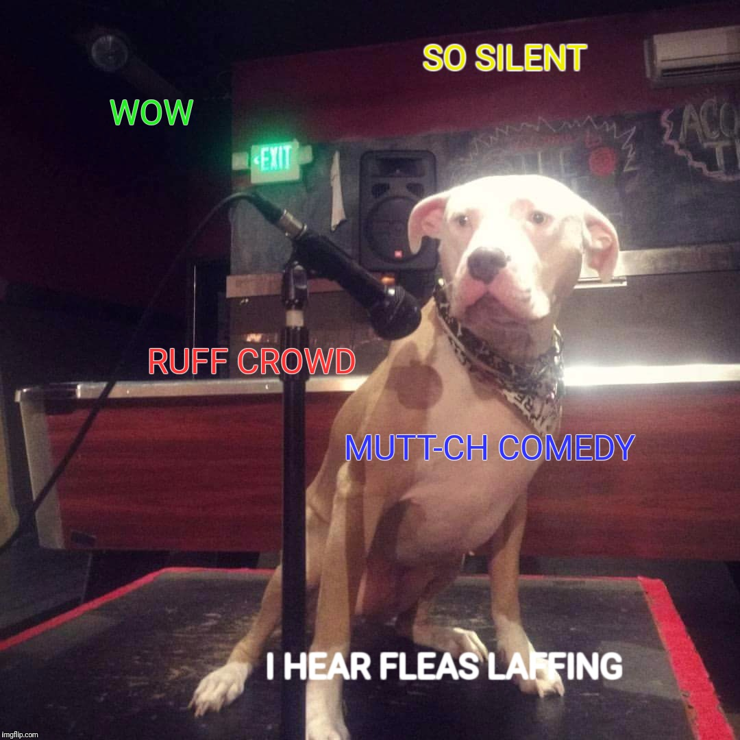 Doge comedian | WOW RUFF CROWD MUTT-CH COMEDY I HEAR FLEAS LAFFING SO SILENT | image tagged in dog,doge,comedy,mic,puns | made w/ Imgflip meme maker