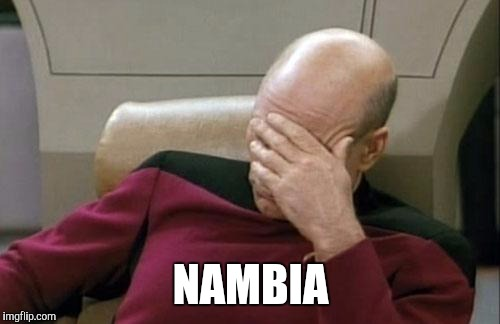 Captain Picard Facepalm Meme | NAMBIA | image tagged in memes,captain picard facepalm | made w/ Imgflip meme maker