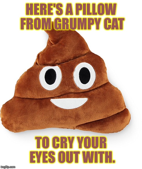 HERE'S A PILLOW FROM GRUMPY CAT TO CRY YOUR EYES OUT WITH. | made w/ Imgflip meme maker