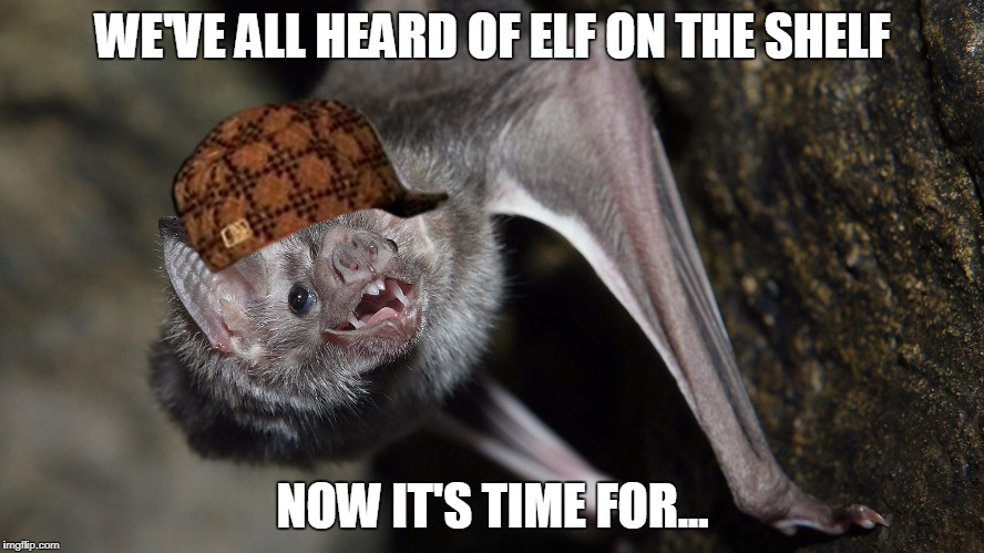 WE'VE ALL HEARD OF ELF ON THE SHELF NOW IT'S TIME FOR... | image tagged in elfontheshelf elfontheshelfmeme | made w/ Imgflip meme maker