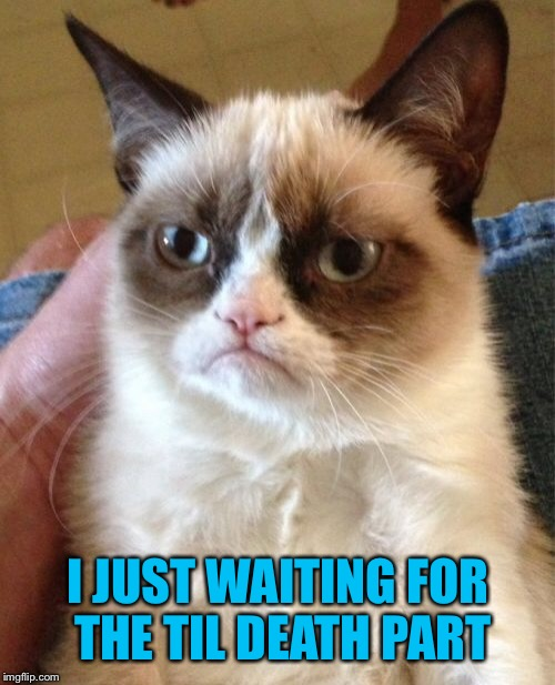 Grumpy Cat Meme | I JUST WAITING FOR THE TIL DEATH PART | image tagged in memes,grumpy cat | made w/ Imgflip meme maker