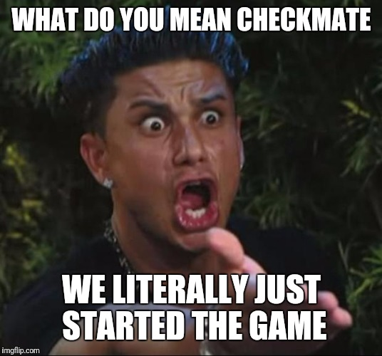 Me when I'm playing chess | WHAT DO YOU MEAN CHECKMATE WE LITERALLY JUST STARTED THE GAME | image tagged in memes,dj pauly d | made w/ Imgflip meme maker
