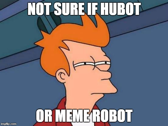 probably a lot more memes here.. | NOT SURE IF HUBOT OR MEME ROBOT | image tagged in memes,futurama fry | made w/ Imgflip meme maker