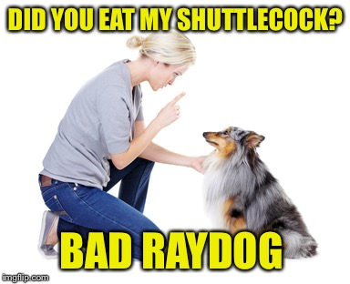 DID YOU EAT MY SHUTTLECOCK? BAD RAYDOG | made w/ Imgflip meme maker