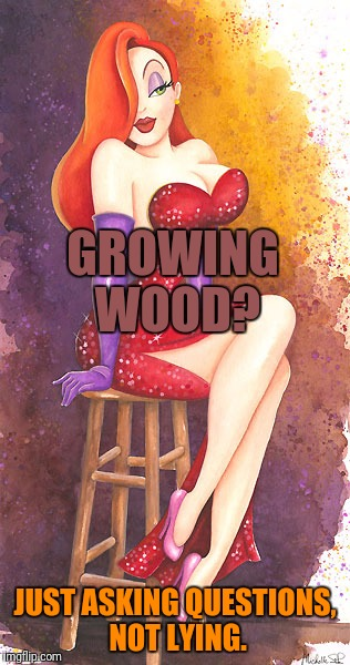 GROWING WOOD? JUST ASKING QUESTIONS, NOT LYING. | made w/ Imgflip meme maker