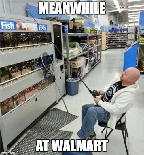 When your wife takes you grocery shopping |  MEANWHILE; AT WALMART | image tagged in meanwhile in,walmart,fish,fishing,jack daniels,bald | made w/ Imgflip meme maker