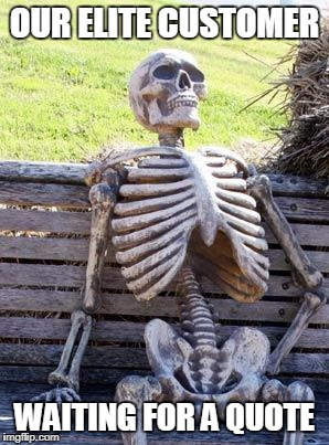 Waiting Skeleton Meme | OUR ELITE CUSTOMER WAITING FOR A QUOTE | image tagged in memes,waiting skeleton | made w/ Imgflip meme maker