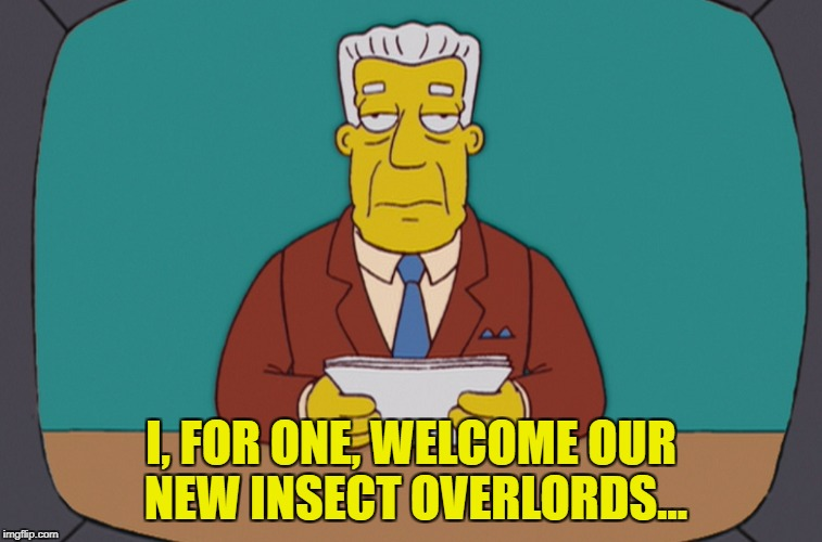 I, FOR ONE, WELCOME OUR NEW INSECT OVERLORDS... | made w/ Imgflip meme maker