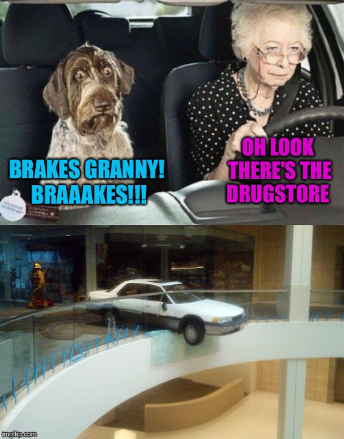 BRAKES GRANNY! BRAAAKES!!! OH LOOK THERE'S THE DRUGSTORE | made w/ Imgflip meme maker