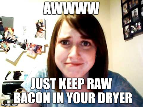 AWWWW JUST KEEP RAW BACON IN YOUR DRYER | made w/ Imgflip meme maker