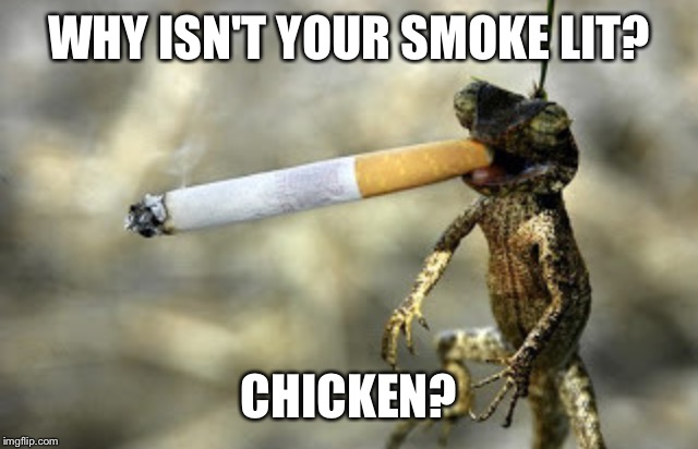WHY ISN'T YOUR SMOKE LIT? CHICKEN? | made w/ Imgflip meme maker