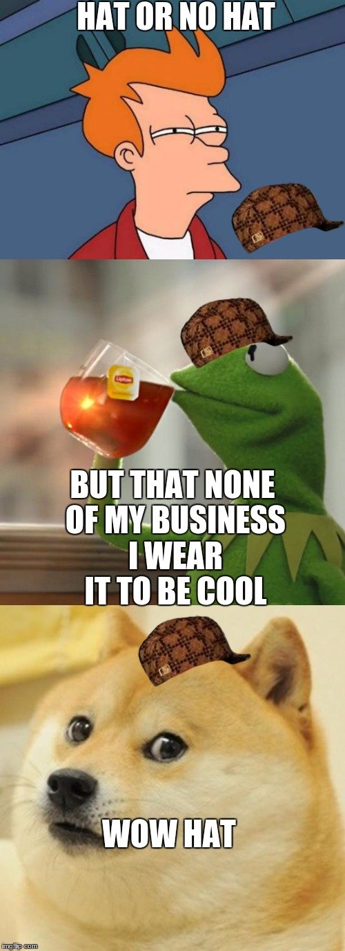 will he wear a hat | HAT OR NO HAT BUT THAT NONE OF MY BUSINESS I WEAR IT TO BE COOL WOW HAT | image tagged in hats | made w/ Imgflip meme maker