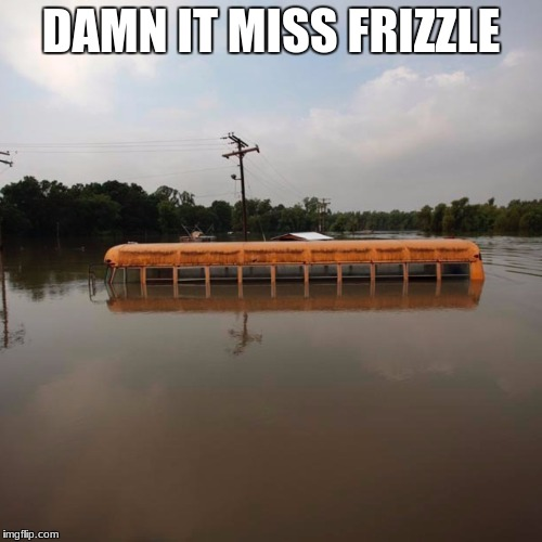 DAMN IT MISS FRIZZLE | image tagged in flooded school bus | made w/ Imgflip meme maker