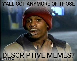 Y'all Got Any More Of That Meme | Y'ALL GOT ANYMORE OF THOSE DESCRIPTIVE MEMES? | image tagged in memes,yall got any more of | made w/ Imgflip meme maker