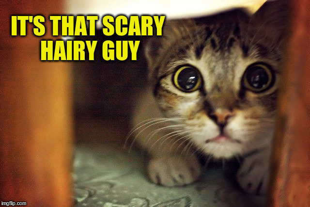 IT'S THAT SCARY HAIRY GUY | made w/ Imgflip meme maker