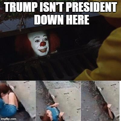 pennywise in sewer | TRUMP ISN'T PRESIDENT DOWN HERE | image tagged in pennywise in sewer | made w/ Imgflip meme maker