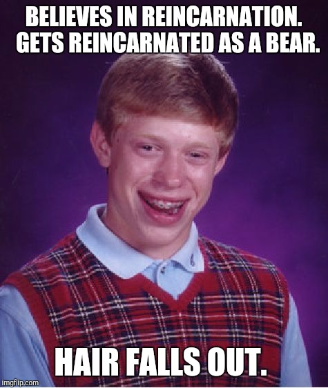 Bad Luck Brian Meme | BELIEVES IN REINCARNATION.  GETS REINCARNATED AS A BEAR. HAIR FALLS OUT. | image tagged in memes,bad luck brian | made w/ Imgflip meme maker