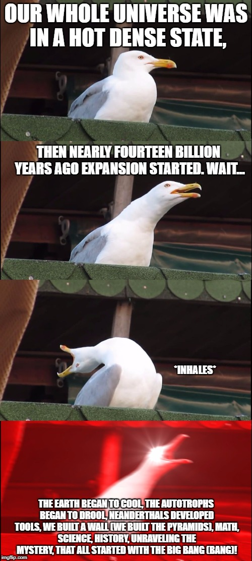 Inhaling Seagull Meme | OUR WHOLE UNIVERSE WAS IN A HOT DENSE STATE, THE EARTH BEGAN TO COOL, THE AUTOTROPHS BEGAN TO DROOL, NEANDERTHALS DEVELOPED TOOLS, WE BUILT  | image tagged in inhaling seagull | made w/ Imgflip meme maker