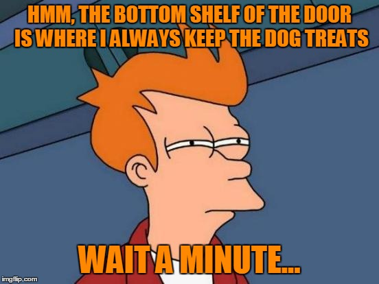 Futurama Fry Meme | HMM, THE BOTTOM SHELF OF THE DOOR IS WHERE I ALWAYS KEEP THE DOG TREATS WAIT A MINUTE... | image tagged in memes,futurama fry | made w/ Imgflip meme maker
