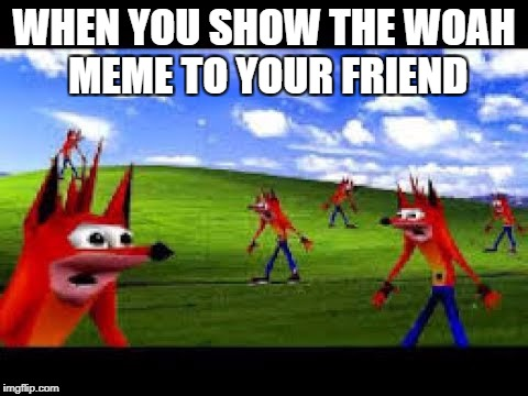 WHEN YOU SHOW THE WOAH MEME TO YOUR FRIEND | image tagged in woah,memes | made w/ Imgflip meme maker