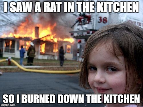 Disaster Girl Meme | I SAW A RAT IN THE KITCHEN SO I BURNED DOWN THE KITCHEN | image tagged in memes,disaster girl | made w/ Imgflip meme maker