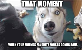 Comic sans sucks | THAT MOMENT WHEN YOUR FRIENDS FAVORITE FONT, IS COMIC SANS | image tagged in suprised | made w/ Imgflip meme maker