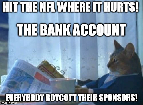 I Should Buy A Boat Cat Meme | HIT THE NFL WHERE IT HURTS! EVERYBODY BOYCOTT THEIR SPONSORS! THE BANK ACCOUNT | image tagged in memes,i should buy a boat cat | made w/ Imgflip meme maker