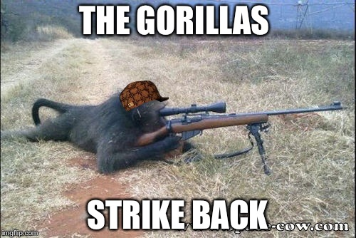 Gorilla Warfare | THE GORILLAS STRIKE BACK | image tagged in gorilla warfare,scumbag | made w/ Imgflip meme maker