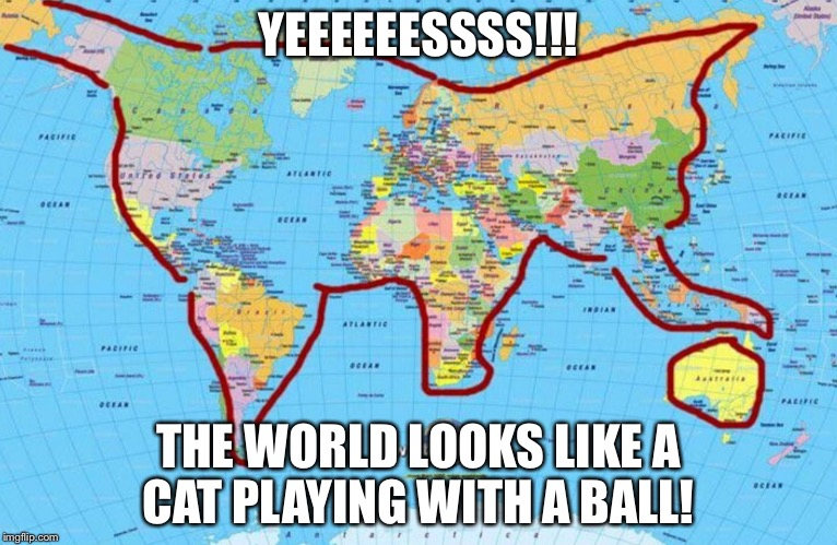 Screw you haters! |  YEEEEEESSSS!!! THE WORLD LOOKS LIKE A CAT PLAYING WITH A BALL! | image tagged in cat world,cat,map | made w/ Imgflip meme maker