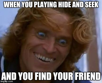 WHEN YOU PLAYING HIDE AND SEEK AND YOU FIND YOUR FRIEND | image tagged in that face you make | made w/ Imgflip meme maker