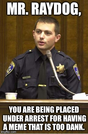 Police Officer Testifying Meme | MR. RAYDOG, YOU ARE BEING PLACED UNDER ARREST FOR HAVING A MEME THAT IS TOO DANK. | image tagged in memes,police officer testifying | made w/ Imgflip meme maker