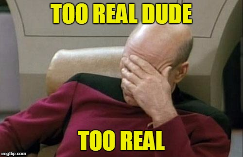 Captain Picard Facepalm Meme | TOO REAL DUDE TOO REAL | image tagged in memes,captain picard facepalm | made w/ Imgflip meme maker
