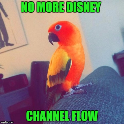NO MORE DISNEY CHANNEL FLOW | image tagged in cool | made w/ Imgflip meme maker