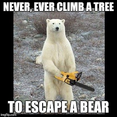Chainsaw Bear | NEVER, EVER CLIMB A TREE TO ESCAPE A BEAR | image tagged in chainsaw bear | made w/ Imgflip meme maker