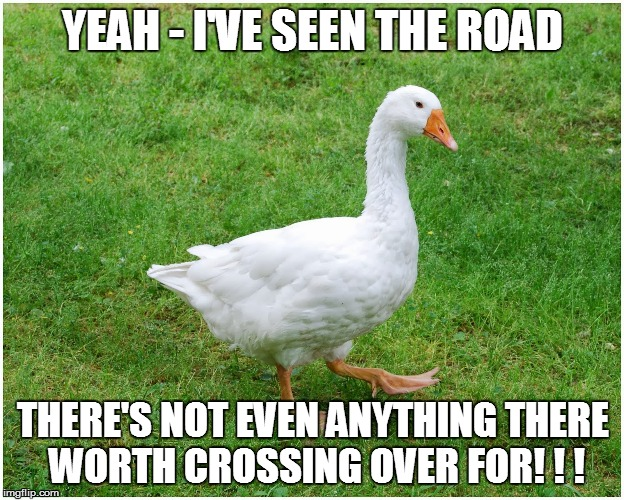 YEAH - I'VE SEEN THE ROAD THERE'S NOT EVEN ANYTHING THERE WORTH CROSSING OVER FOR! ! ! | made w/ Imgflip meme maker