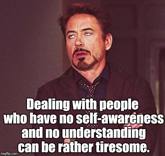 Tiresome People | Dealing with people who have no self-awareness and no understanding can be rather tiresome. | image tagged in awareness,understanding,stupid people,quote,robert downey jr,that face you make | made w/ Imgflip meme maker