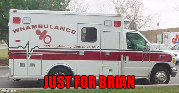 Call The Whambulance | JUST FOR BRIAN | image tagged in call the whambulance | made w/ Imgflip meme maker