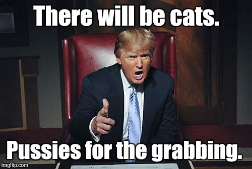 There will be cats. Pussies for the grabbing. | made w/ Imgflip meme maker