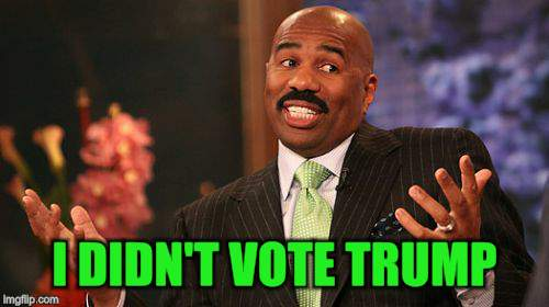 Steve Harvey Meme | I DIDN'T VOTE TRUMP | image tagged in memes,steve harvey | made w/ Imgflip meme maker