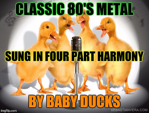 AND NOW FOR SOMETHING COMPLETELY DIFFERENT! :D | CLASSIC 80'S METAL BY BABY DUCKS SUNG IN FOUR PART HARMONY | image tagged in singing ducks,funny,memes,animals,music,monty python | made w/ Imgflip meme maker
