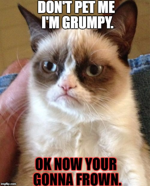Grumpy Cat Meme | DON'T PET ME I'M GRUMPY. OK NOW YOUR GONNA FROWN. | image tagged in memes,grumpy cat | made w/ Imgflip meme maker