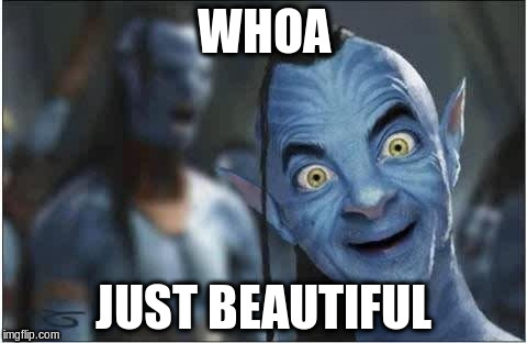 WHOA JUST BEAUTIFUL | made w/ Imgflip meme maker