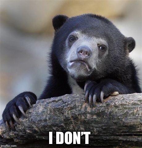 Confession Bear Meme | I DON'T | image tagged in memes,confession bear | made w/ Imgflip meme maker