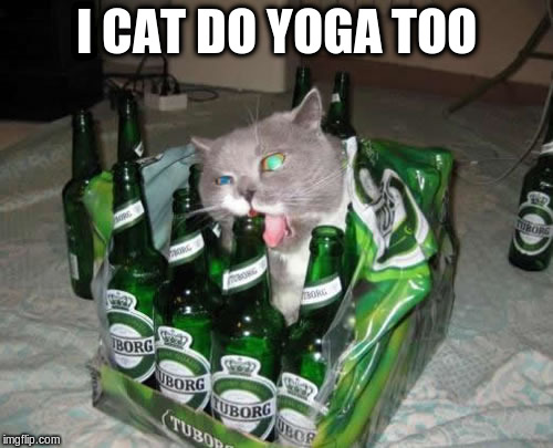 I CAT DO YOGA TOO | made w/ Imgflip meme maker