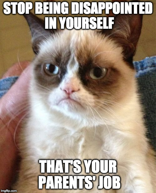 Grumpy Cat | STOP BEING DISAPPOINTED IN YOURSELF THAT'S YOUR PARENTS' JOB | image tagged in memes,grumpy cat,disappointed,iwanttobebacon | made w/ Imgflip meme maker
